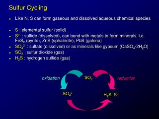 Sulfur Cycling