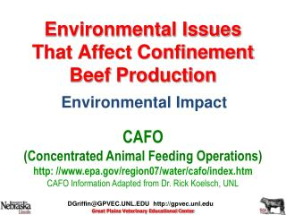 Environmental Issues That Affect Confinement  Beef Production