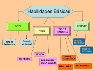 Habilidades B sicas