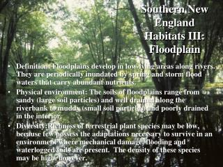 Southern New England Habitats III: Floodplain