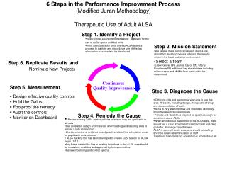 6 Steps in the Performance Improvement Process  Modified Juran Methodology  Therapeutic Use of Adult ALSA