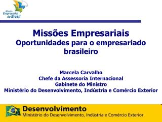 Miss es Empresariais Oportunidades para o empresariado brasileiro