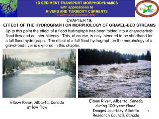 CHAPTER 19: EFFECT OF THE HYDROGRAPH ON MORPHOLOGY OF GRAVEL-BED STREAMS