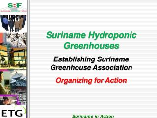 Suriname Hydroponic Greenhouses Establishing Suriname Greenhouse Association Organizing for Action