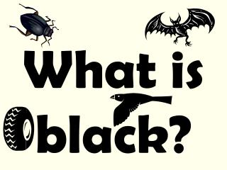 What is black