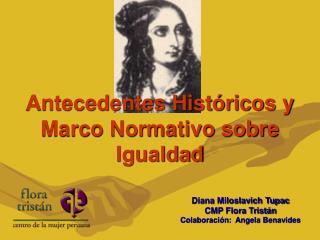 Antecedentes Hist ricos y Marco Normativo sobre Igualdad