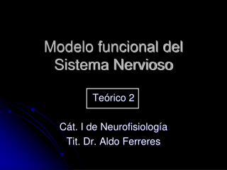 Modelo funcional del Sistema Nervioso