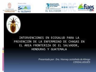 Presentado por:  Dra. Vianney casta eda de Abrego  CENSALUD