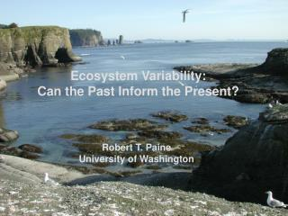 Ecosystem Variability: Can the Past Inform the Present