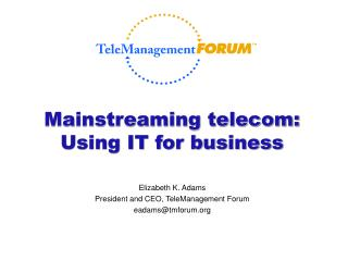 Mainstreaming telecom: Using IT for business