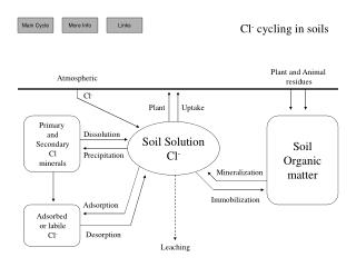 Soil Solution Cl-
