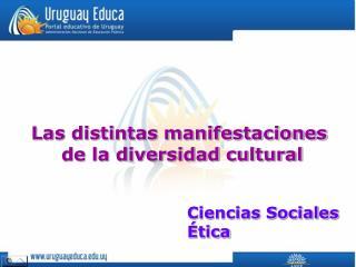 Las distintas manifestaciones  de la diversidad cultural