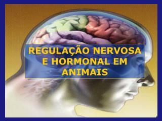 REGULA  O NERVOSA E HORMONAL EM ANIMAIS