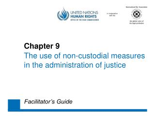 Chapter 9  The use of non-custodial measures  in the administration of justice