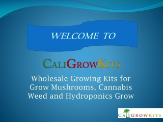 Welcome to Best Grow Kits Supplier - Caligrowkits.com