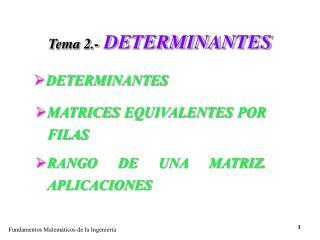 Tema 2.- DETERMINANTES