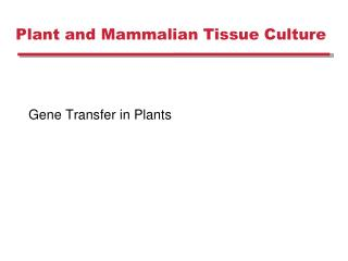 Plant and Mammalian Tissue Culture