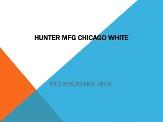 Hunter MFG Chicago White