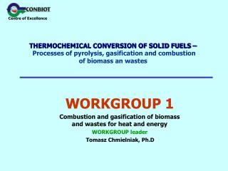 THERMOCHEMICAL CONVERSION OF SOLID FUELS     Processes of pyrolysis, gasification and combustion of biomass an wastes