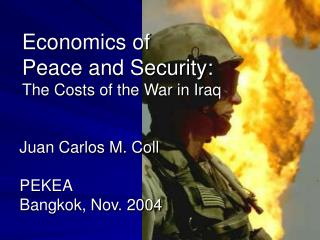 Economics of  Peace and Security: The Costs of the War in Iraq