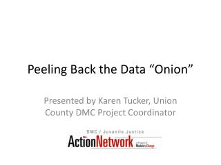 Peeling Back the Data  Onion