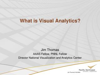 What is Visual Analytics