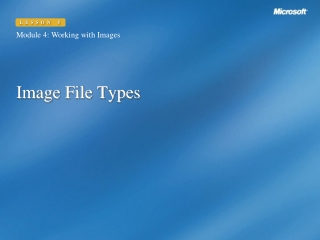 Commonly Found Internet File Types