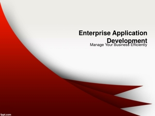 Manage Your Business Efficiently with Enterprise Application
