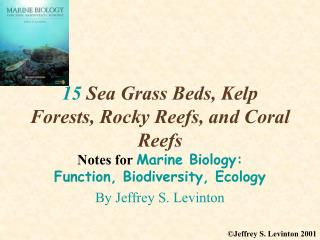 15 Sea Grass Beds