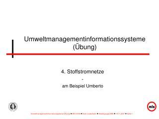 Umweltmanagementinformationssysteme  bung
