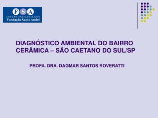 DIAGN STICO AMBIENTAL DO BAIRRO CER MICA   S O CAETANO DO SUL