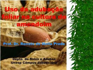 Uso da aduba  o foliar na cultura do amendoim   Prof. Dr. Renato de Mello Prado    Depto. de Solos e Adubos Unesp C mpus