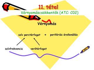 11. t tel