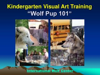 Kindergarten Visual Art Training  Wolf Pup 101