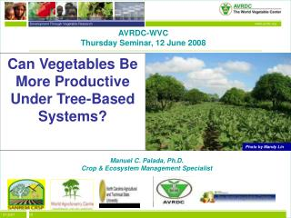 Can Vegetables Be More Productive Under Tree-Based Systems
