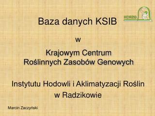 Baza danych KSIB