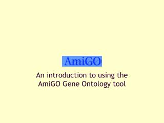 An introduction to using the AmiGO Gene Ontology tool