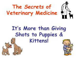 It s More than Giving Shots to Puppies  Kittens