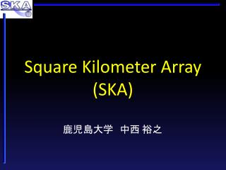 Square Kilometer Array SKA