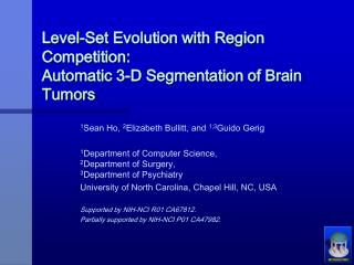 Level-Set Evolution with Region Competition: Automatic 3-D Segmentation of Brain Tumors