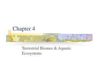 Terrestrial Biomes  Aquatic Ecosystems