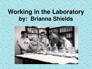 Working in the Laboratory by:  Brianna Shields
