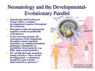 Neonatology and the Developmental- Evolutionary Parallel