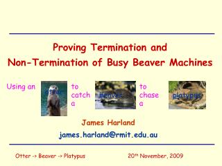 Proving Termination and  Non-Termination of Busy Beaver Machines