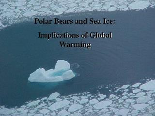 Polar Bears and Sea Ice: Implications of Global Warming