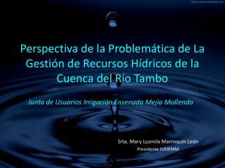 Perspectiva de la Problem tica de La Gesti n de Recursos H dricos de la Cuenca del R o Tambo