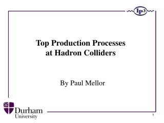 Top Production Processes  at Hadron Colliders