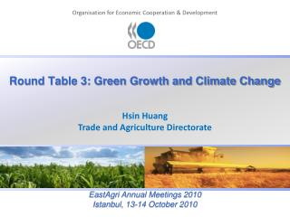 Round Table 3: Green Growth and Climate Change