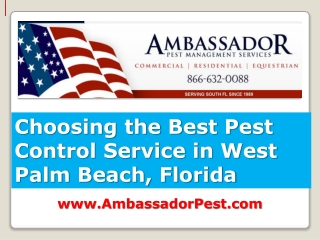 Choosing the Best Pest Control Service in West Palm Beach Fl