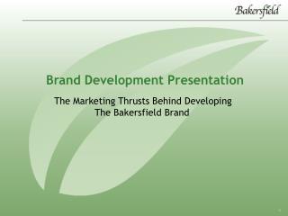Brand Development Presentation